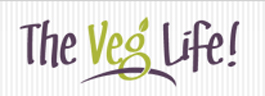 REVIEW: GO Veggie! Dairy Free Review
